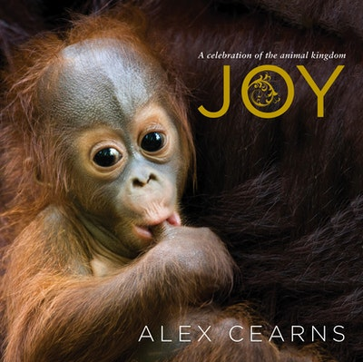 Joy: A Celebration of the Animal Kingdom