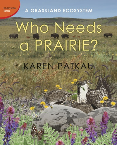 Who Needs A Prairie?