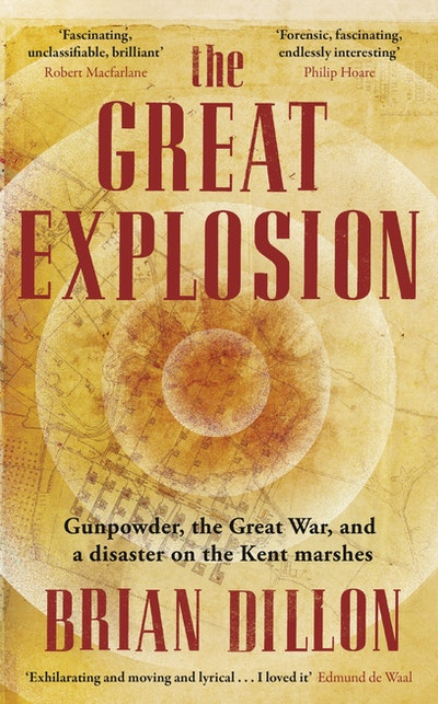 The Great Explosion: Gunpowder, the Great War, and a disaster on the Ke nt marshes