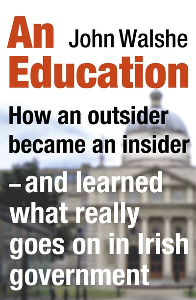 An Education: How an outsider became an insider - and learned what really goes on in Irish Government