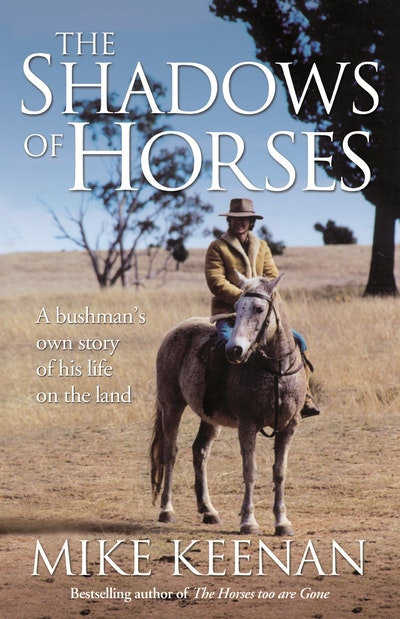 The Shadows Of Horses