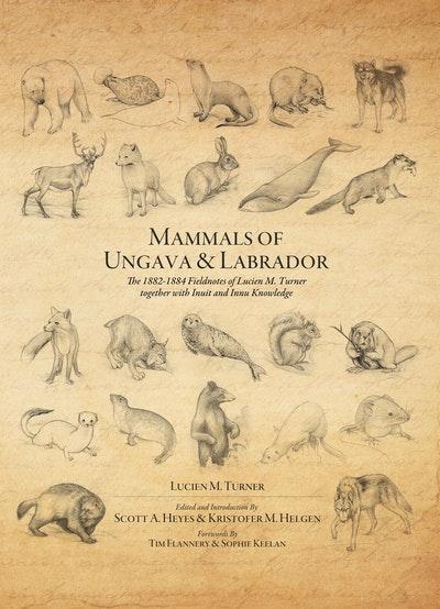 Mammals Of Ungava And Labrador