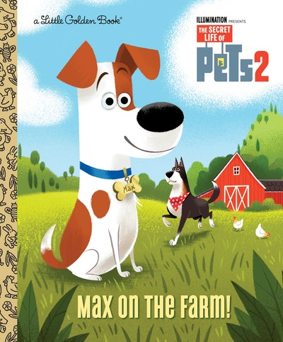 LGB Max on the Farm (The Secret Life of Pets)