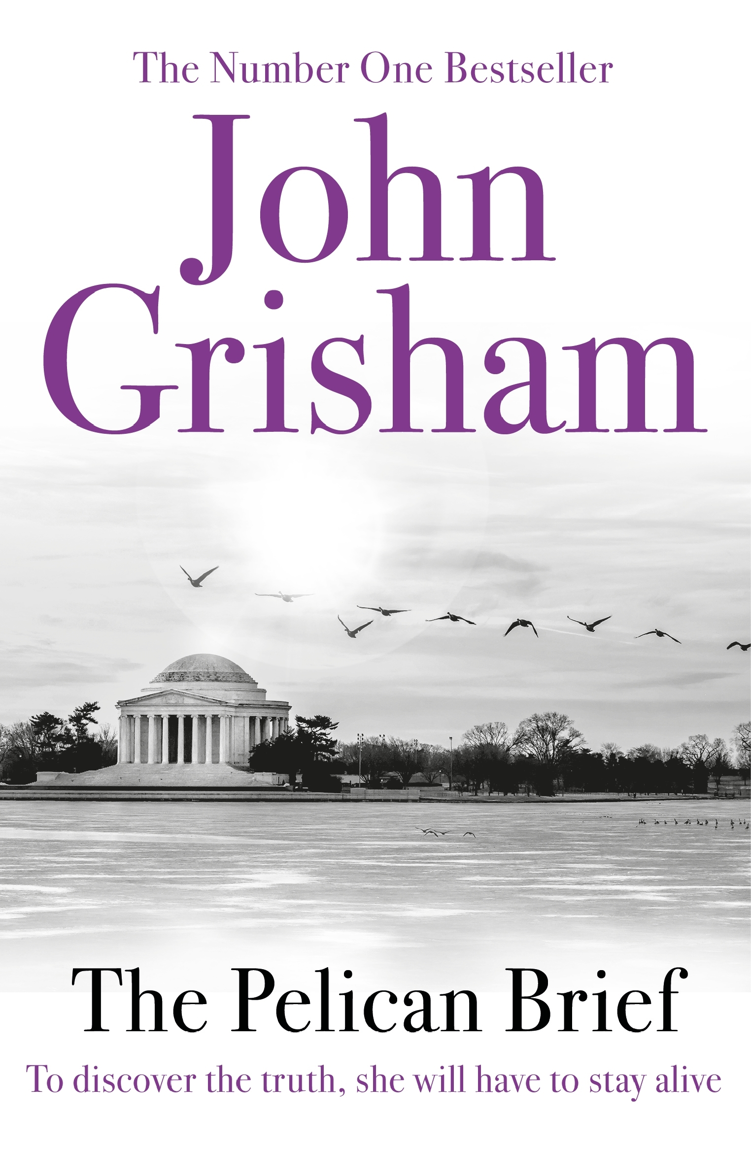 """a literary analysis of the pelican brief by john grisham Fiction: """"the pelican brief"""" by john grisham  the pelican brief,  according to my handy-dandy grisham-o-matic, how does the pelican brief shake ."""