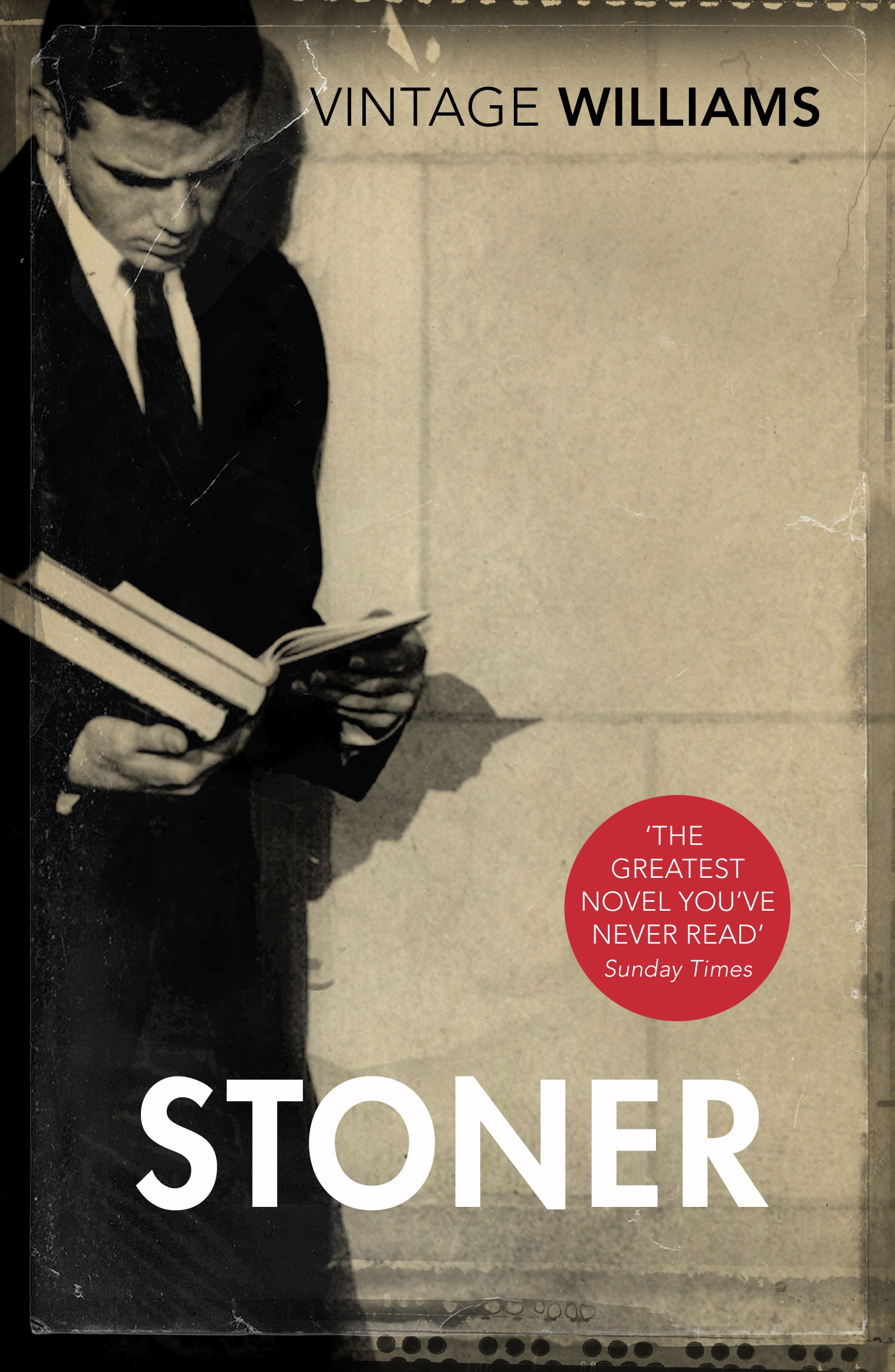 Image result for stoner book cover