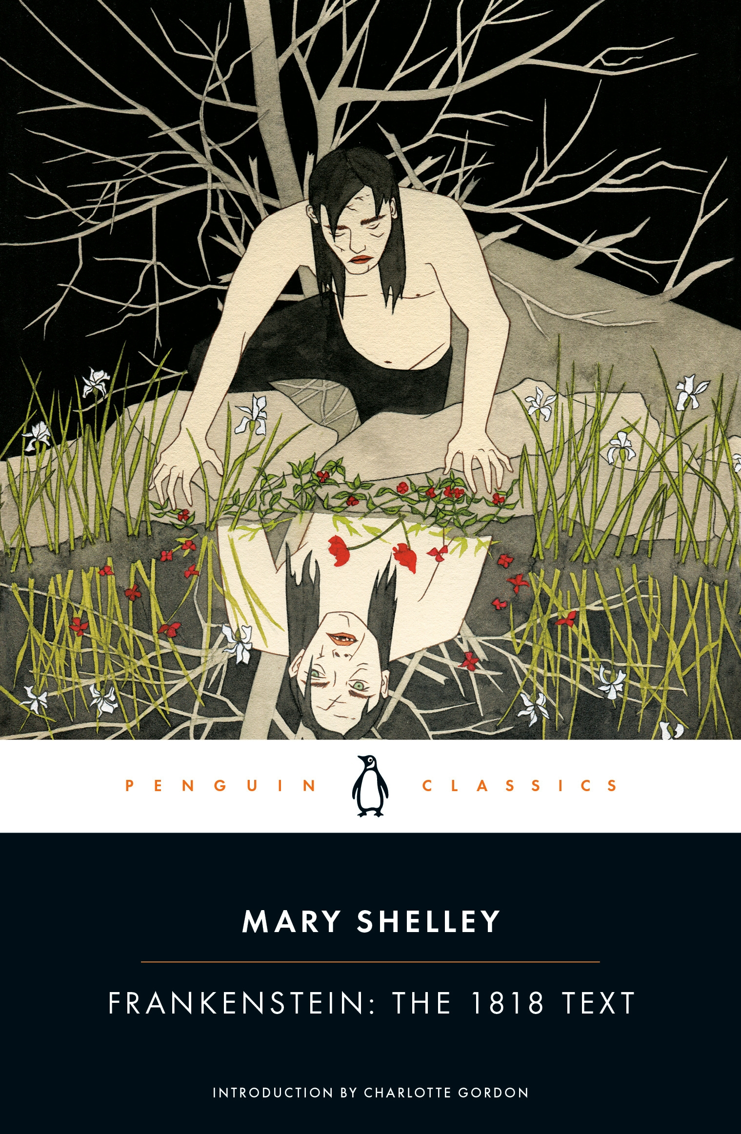 Frankenstein The 1818 Text By Mary Shelley