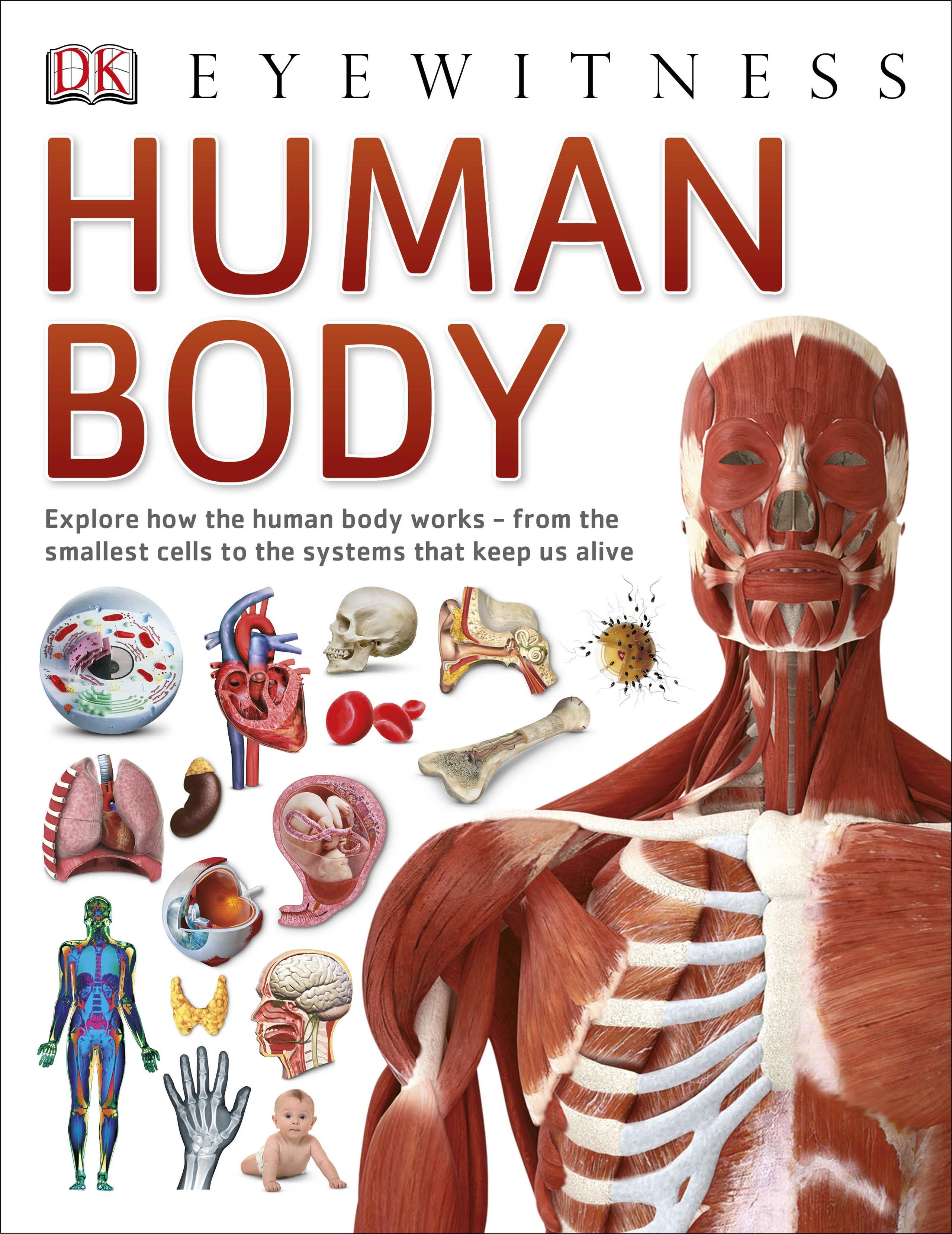 Dk Eyewitness Human Body By Dk Penguin Books New Zealand