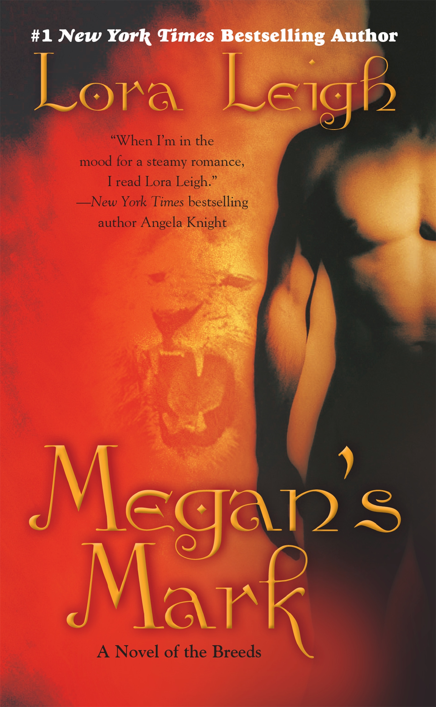 Image result for book cover megan's mark lora leigh