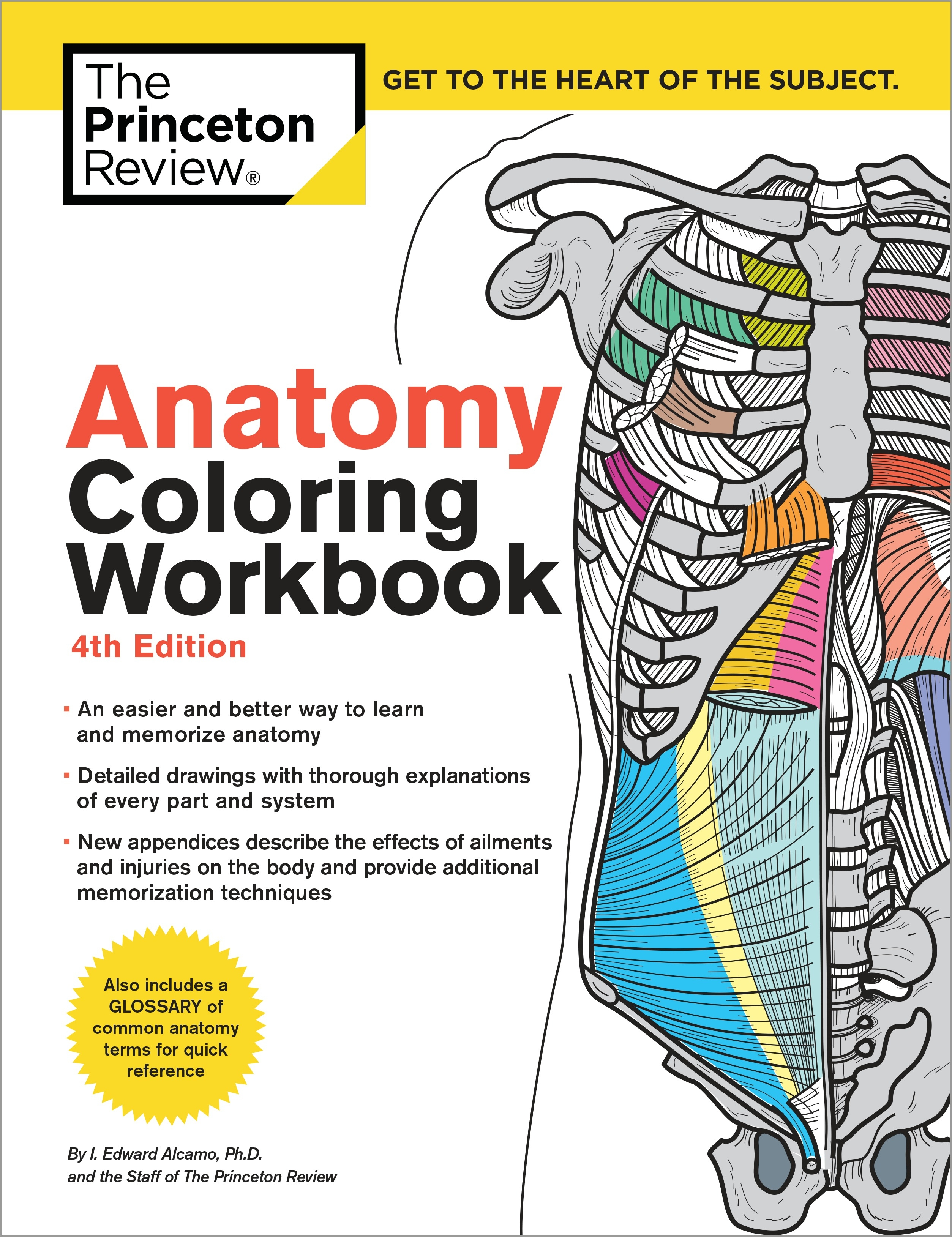 Anatomy Coloring Workbook 4th Edition By The Princeton Review