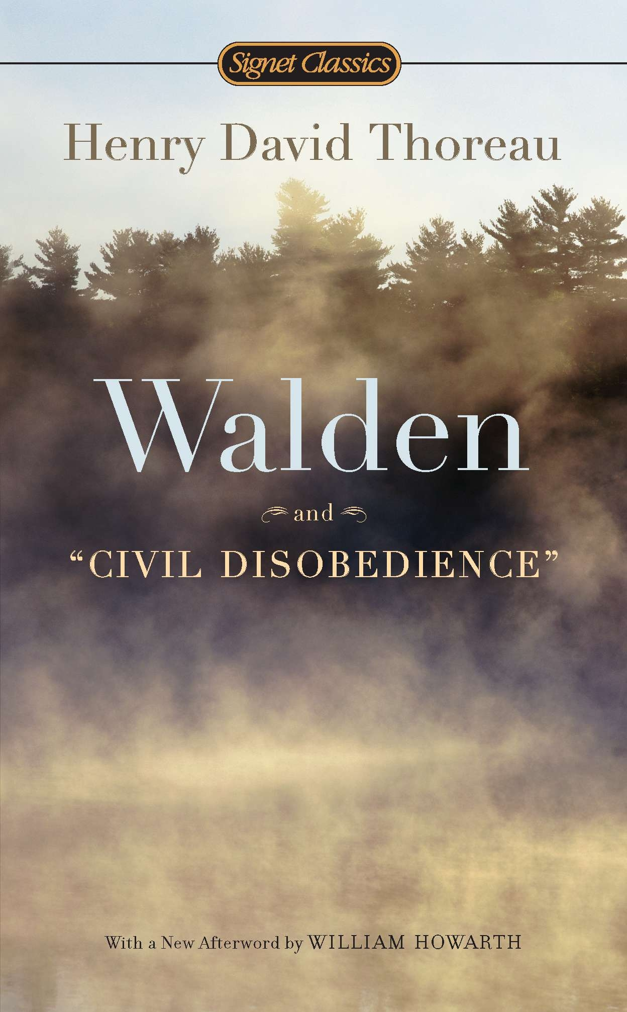Walden And Civil Disobedience By Henry David Thoreau  Penguin Books  Walden And Civil Disobedience