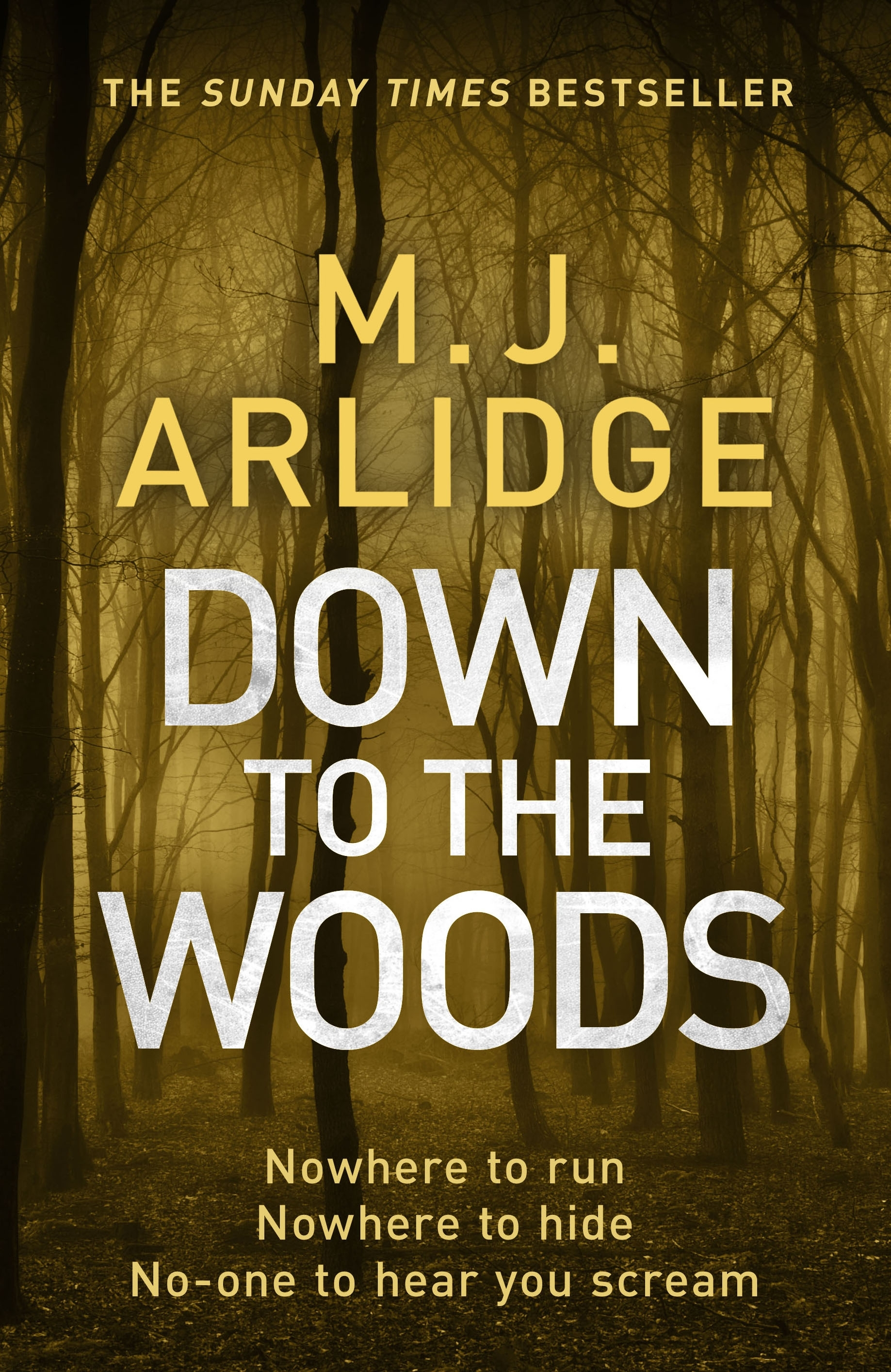 Image result for Down to the Woods mj arlidge book cover
