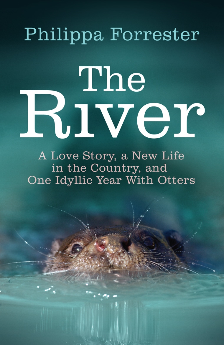 The River A Love Story A New Life In The Country And One Idyllic Year Filming Otters