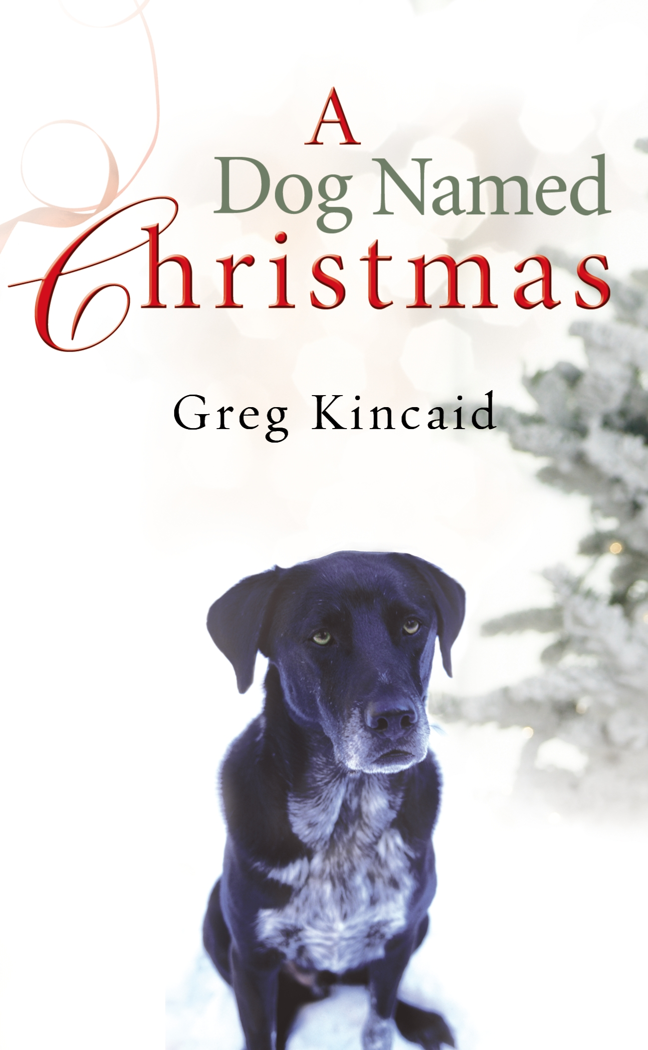 A Dog Named Christmas.A Dog Named Christmas By Greg Kincaid Penguin Books New
