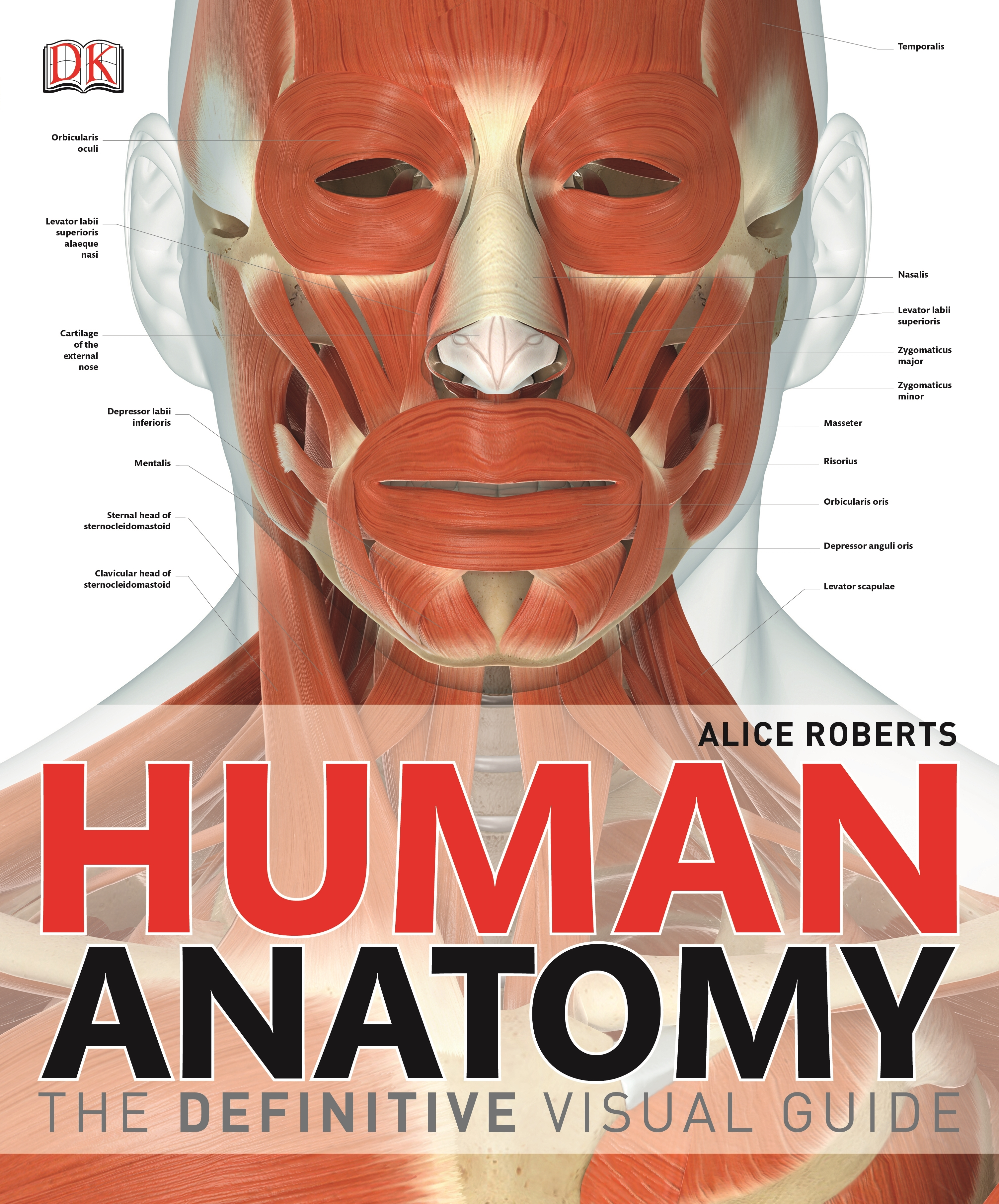 Human Anatomy The Definitive Visual Guide By Alice Roberts