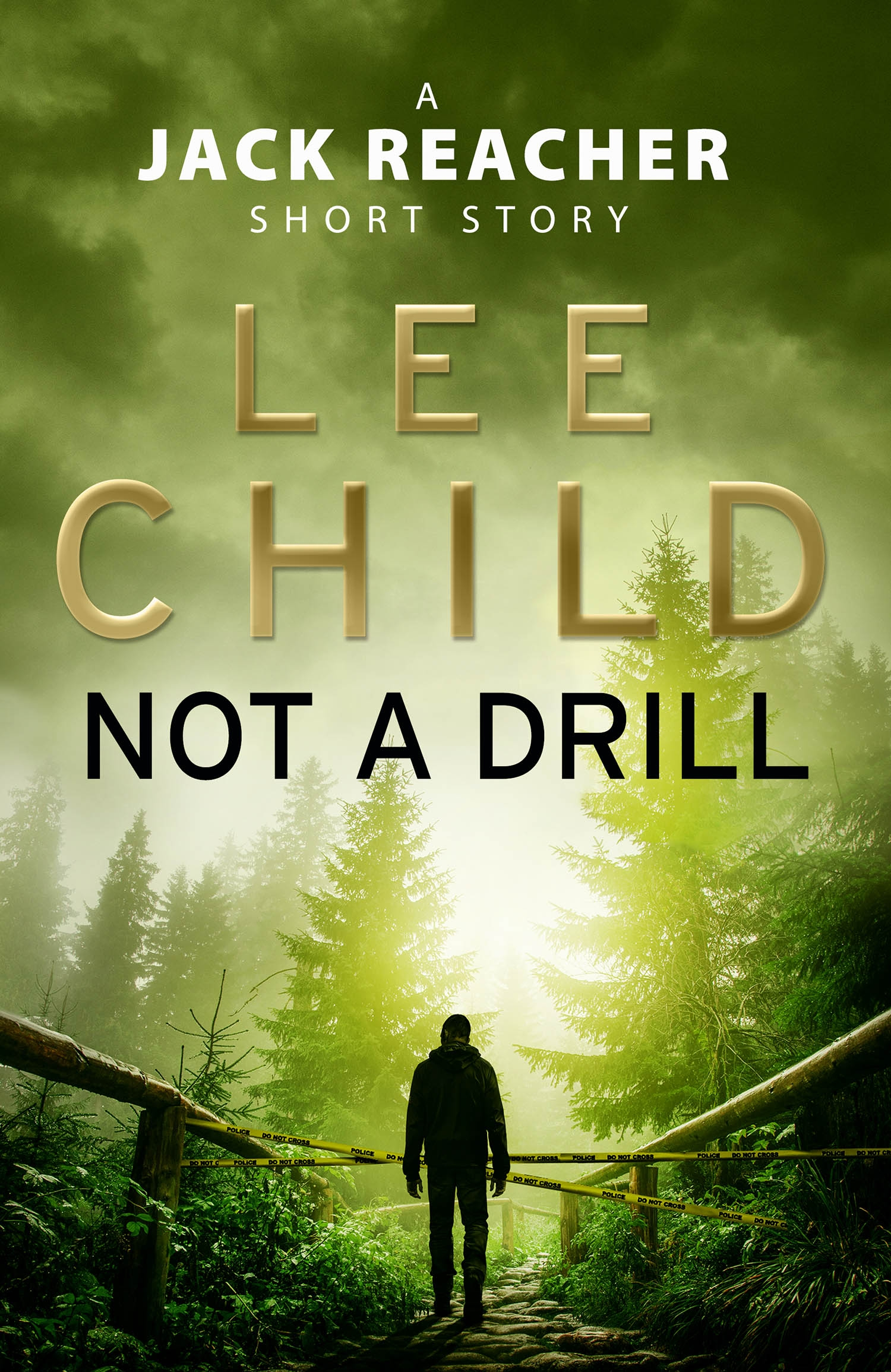 not a drill lee child pdf