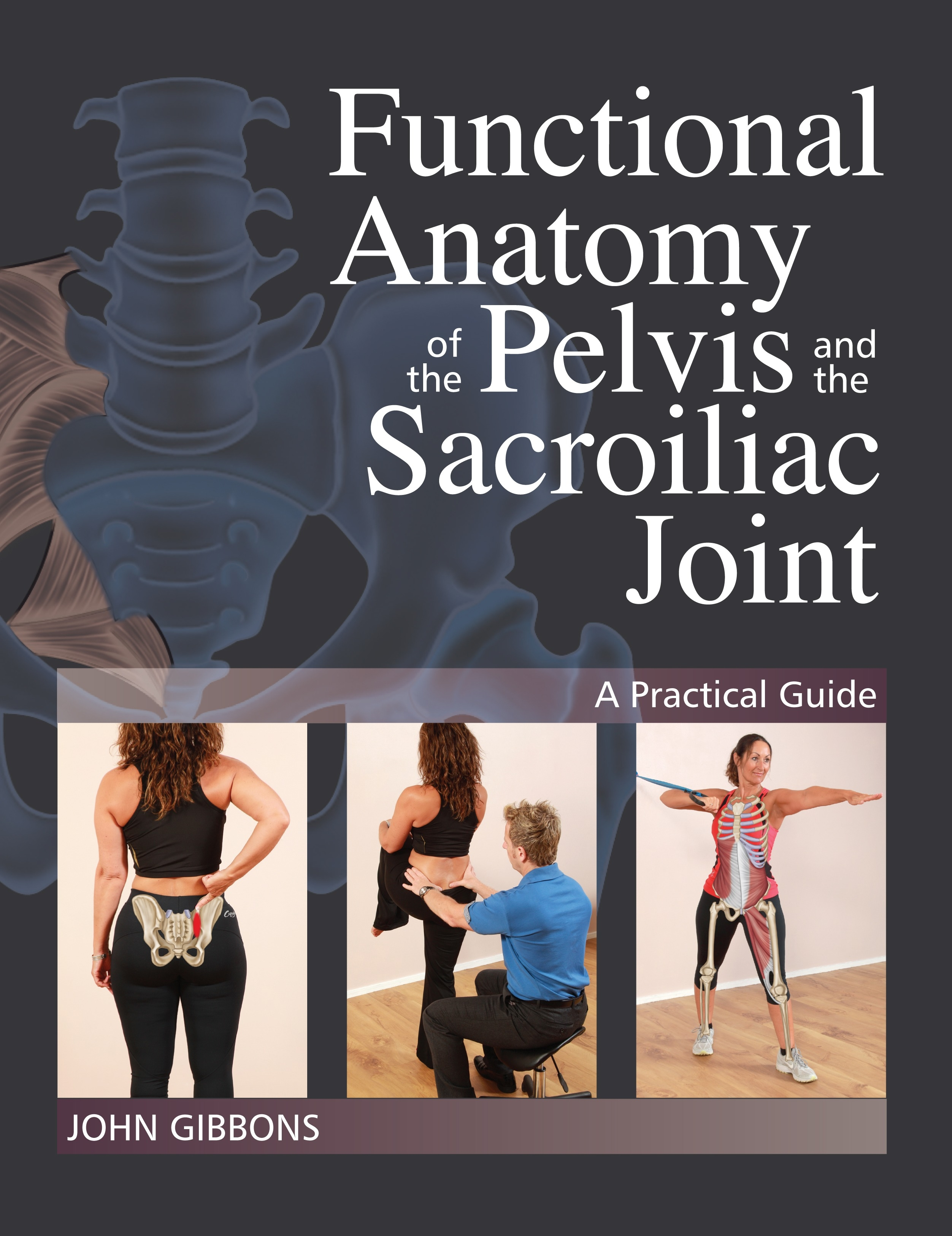 Functional Anatomy Of The Pelvis And The Sacroiliac Joint by John ...