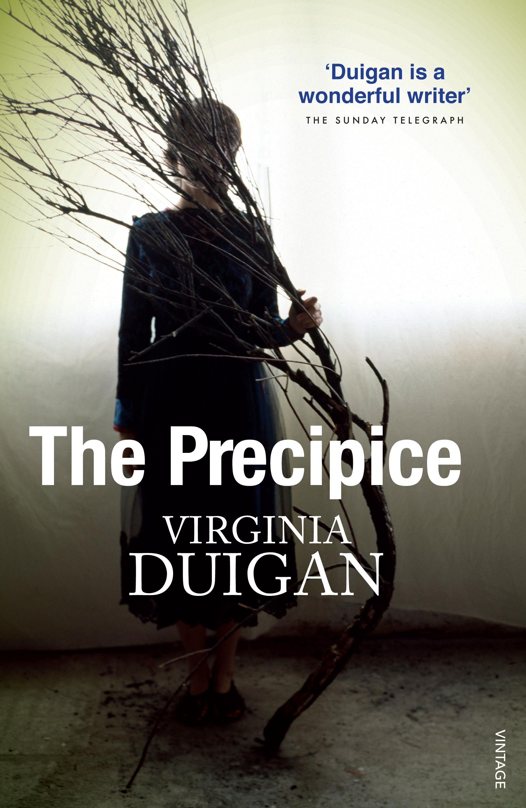 Precipice: The Beginning (Book One)