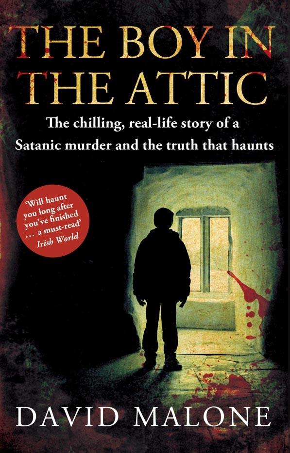 The Boy In The Attic By David Malone Penguin Books New