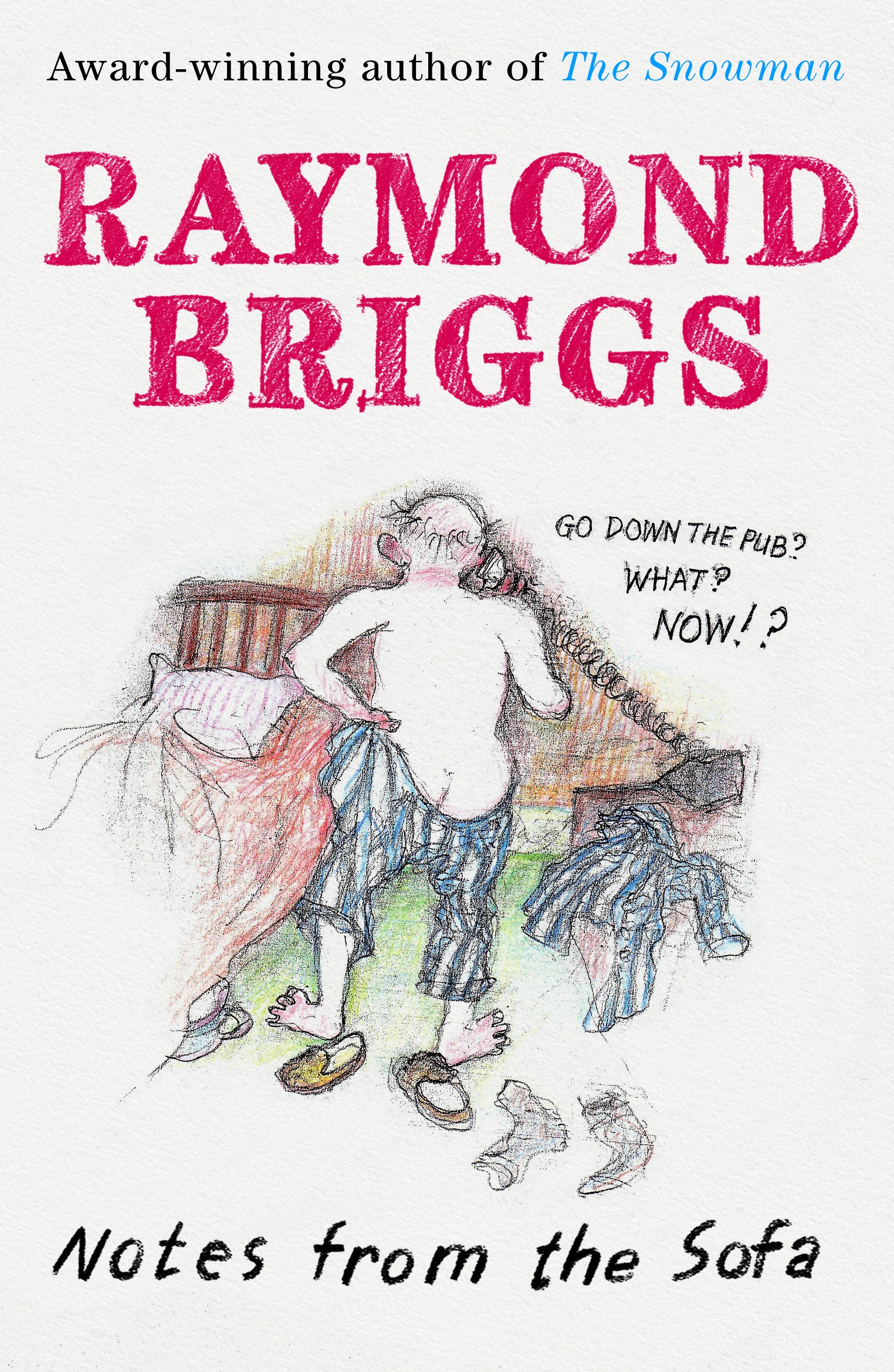 Notes From The Sofa By Raymond Briggs Penguin Books