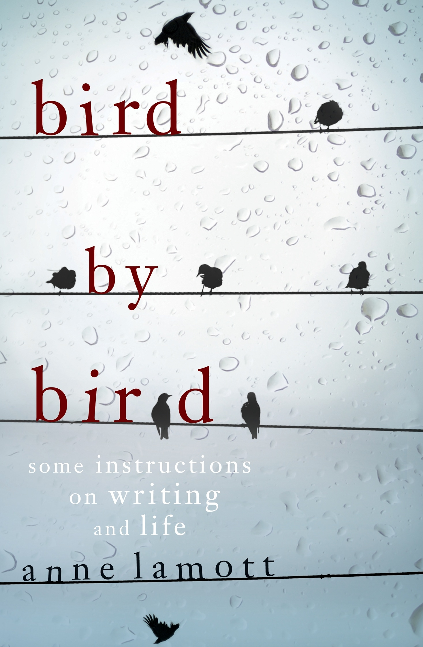 Bird By Bird Some Instructions On Writing And Life By