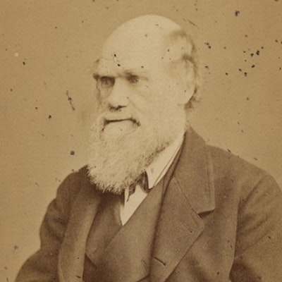 portrait photo of Charles Darwin